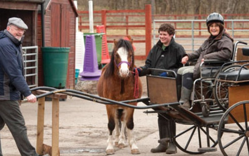 3 people, a pony and a two wheeled carriage